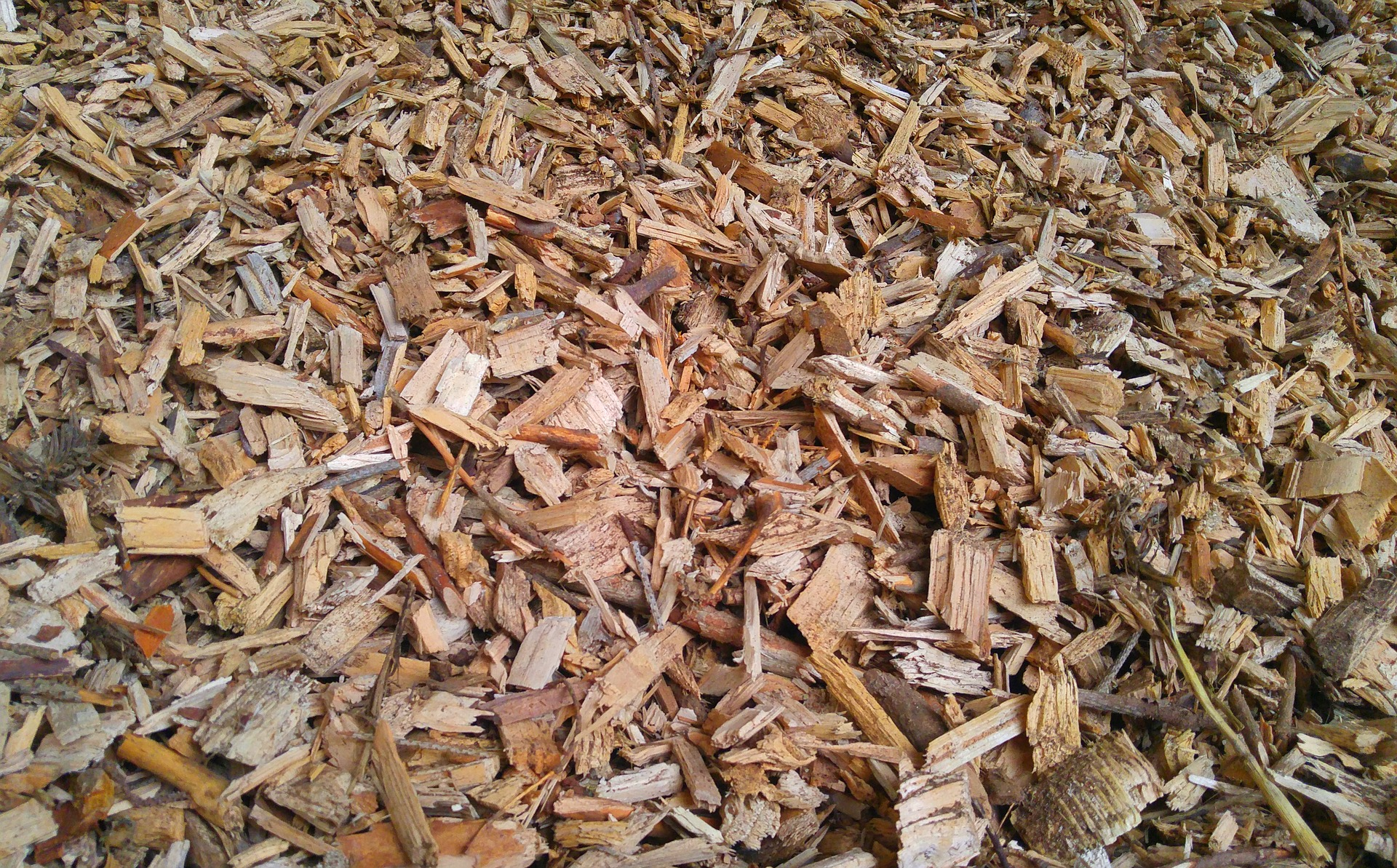 wood-chips-2030653_1920_pixabay.jpg